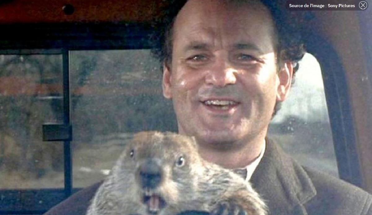 Profiter de la crise pour tuer la marmotte et changer de vie…
